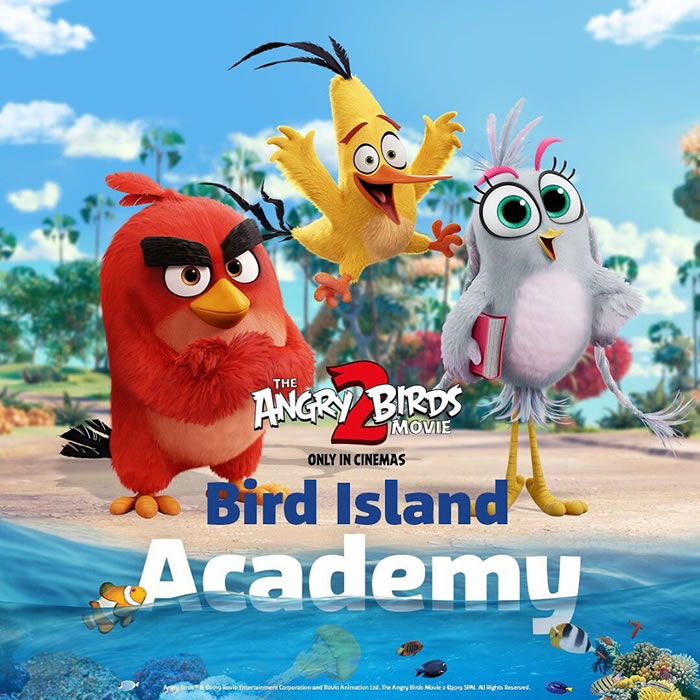 Bird Island Academy at SEA LIFE Melbourne Aquarium