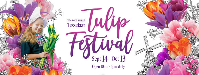 Dutch Weekend | Tesselaar Tulip Festival 2019